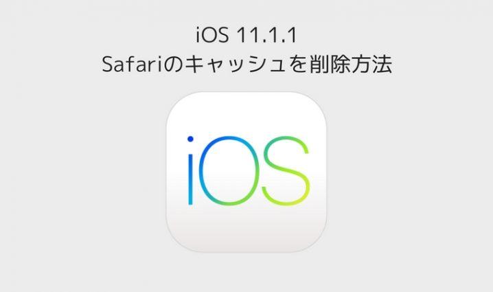 ios11-safari-cache-delete