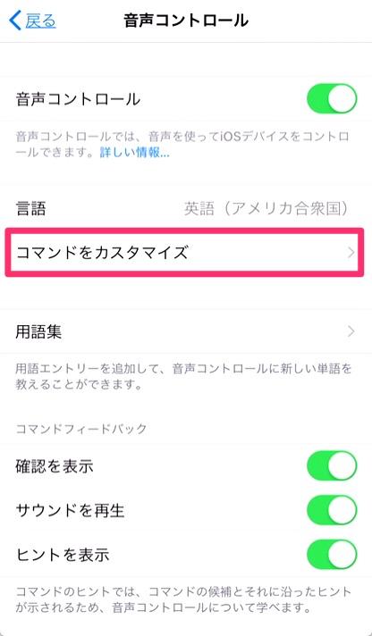 1.「設定アプリ」を開き、「アクセシビティ > 音声コントロール > コマンドをカスマイズ」をタップ